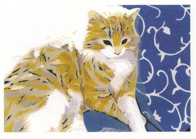 Blue Cushion. Chris Sinden