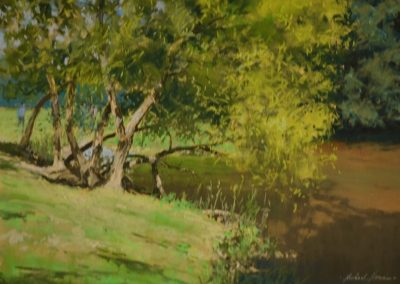 The River Otter in Summer, Michael Norman