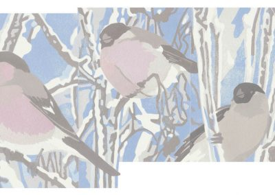 Winterfinches. Chris Sinden