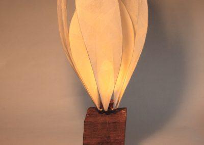 Colin Chetwood, Crocus Lamp