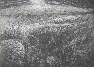 Flora-McLachlan-Your-pastures-all-choked-with-rushes-and-mire-etching-16-x-20cm