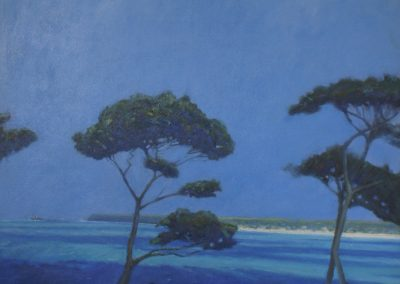 Pine Trees, St Ives