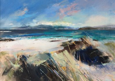 The path to the ocean, Iona. Kim Jarvis