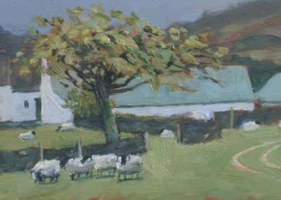 Sheep Farm and Cherry Tree, Appin